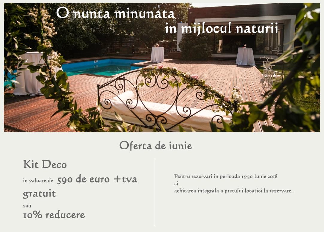 Oferta kit Deco- pentru o nunta minunata